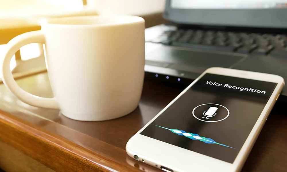 Voice Search And SEO Getting AlexaGoogle Home To Notice You